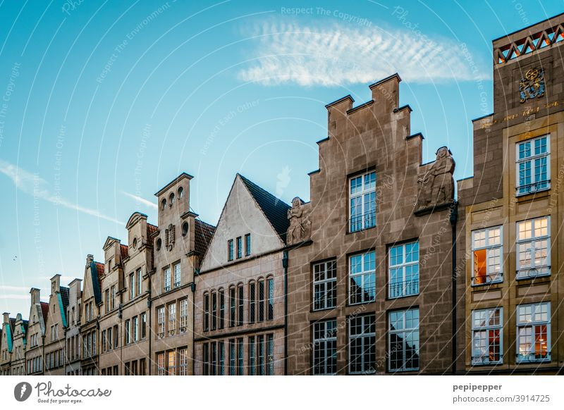 cathedrals muenster Architecture Downtown Town Old town Exterior shot Tourist Attraction Colour photo Building Manmade structures Deserted Landmark Day Facade