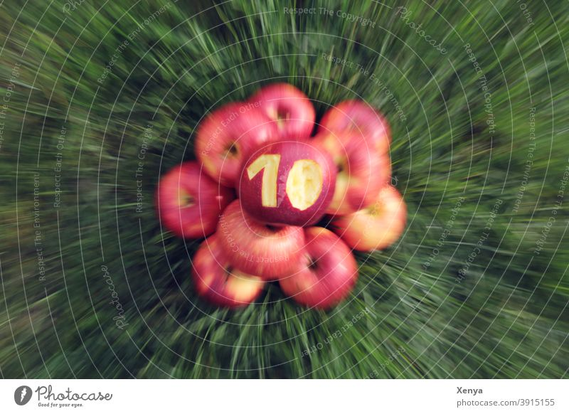 10 years Photocase - Hooray! apples zoom Grass Green Red blurriness ten Autumn Summer Fruit Harvest Mature Food Garden naturally Healthy Delicious Apple Nature