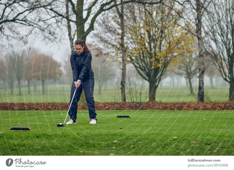Middle-aged woman playing golf on a cold misty winter day on a parkland course teeing off lining up her shot driver tee-off female golfer rainy windy autumn