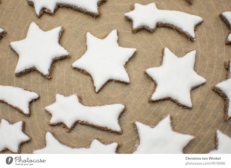 white cinnamon stars lie on baking paper on a baking tray Cinnamon Stars homemade Christmas cookies Cookie bake cookies Christmas baking cut out cookies White
