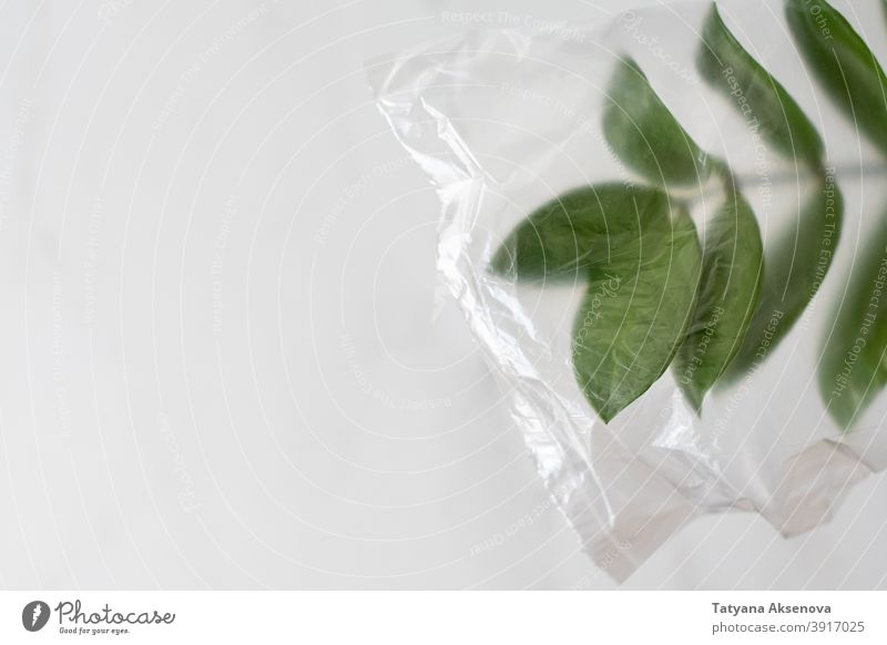 Plant leaves in plastic bag pollution environment problem environmental recycle trash waste white garbage litter rubbish concept plant green