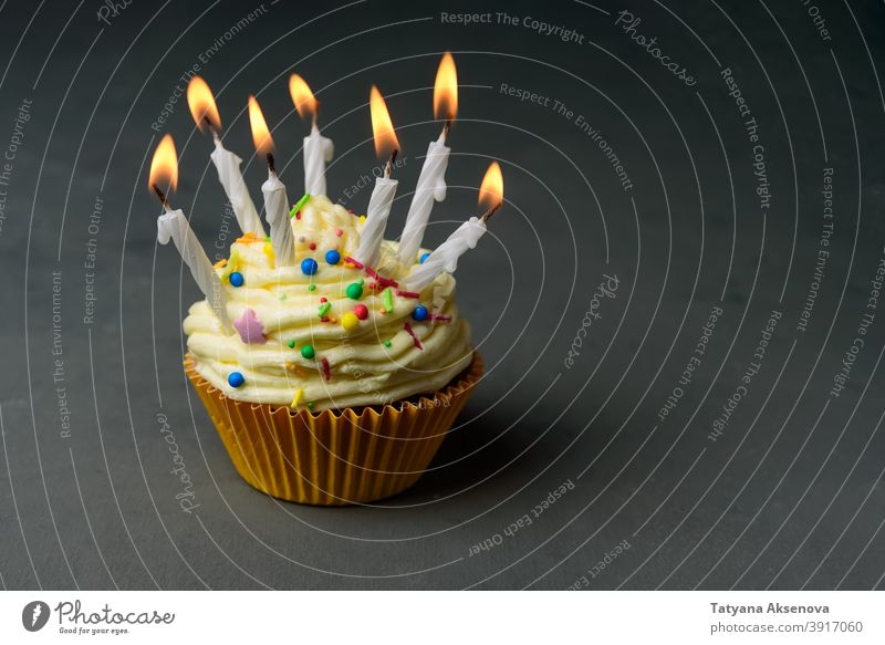 Birthday cupcake with many candles birthday celebration food dessert party sweet frosting copy space horizontal birthday cake buttercream birthday party one