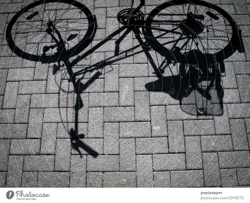 bicycle shadow Bicycle Shadow Street Cycling Transport Exterior shot Means of transport Traffic infrastructure Lanes & trails Road traffic Mobility Driving Town