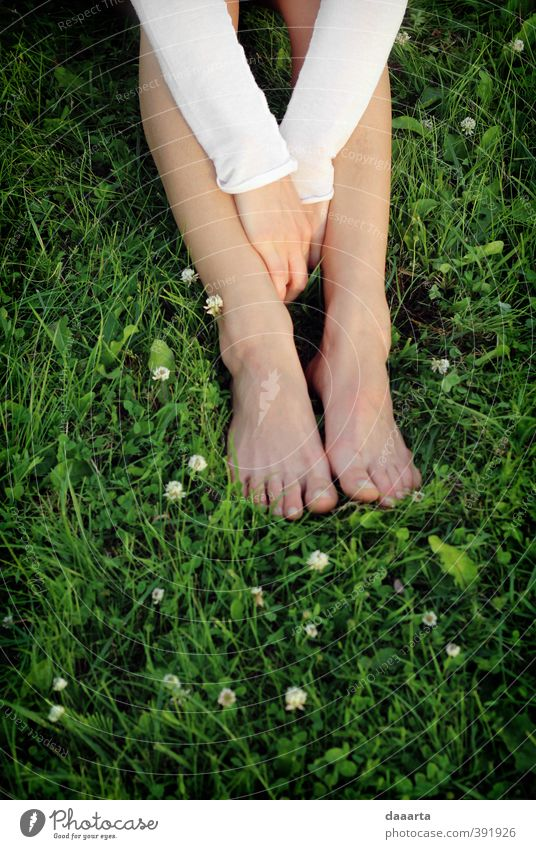 afternoon summer Human being Woman Youth (Young adults) Vacation & Travel Plant Summer Sun Hand Young woman Leaf Adults 18 - 30 years Feminine Grass Freedom