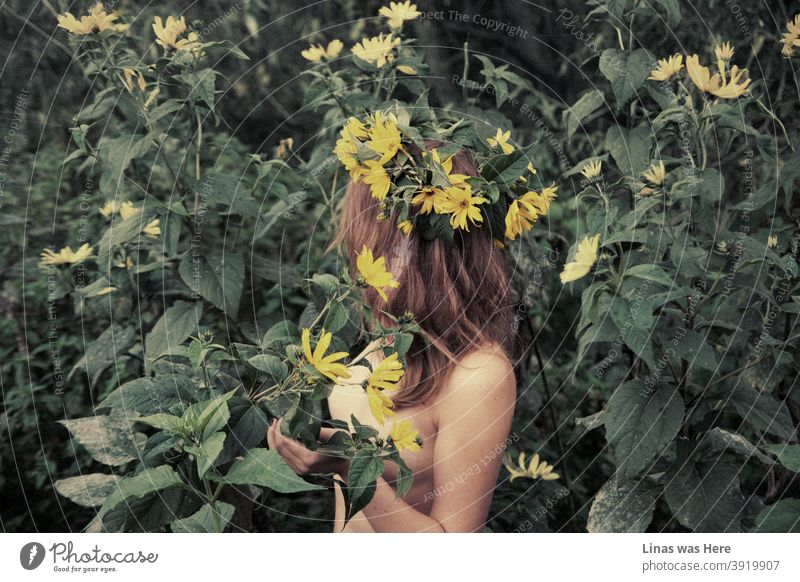 It still doesn't feel like summer solstice yet, though this sensual image of a naked deva with a yellow flower garland in the wild brings the best of the summertime remembrance. Young and naked brunette model out in the green nature.
