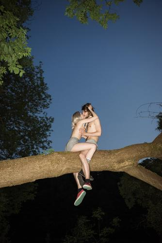 Wild, wild, wild couple kissing in a tree on a perfect summer night. Young and naked. wild youth sexy people topless girl love up in a tree tree branch lust