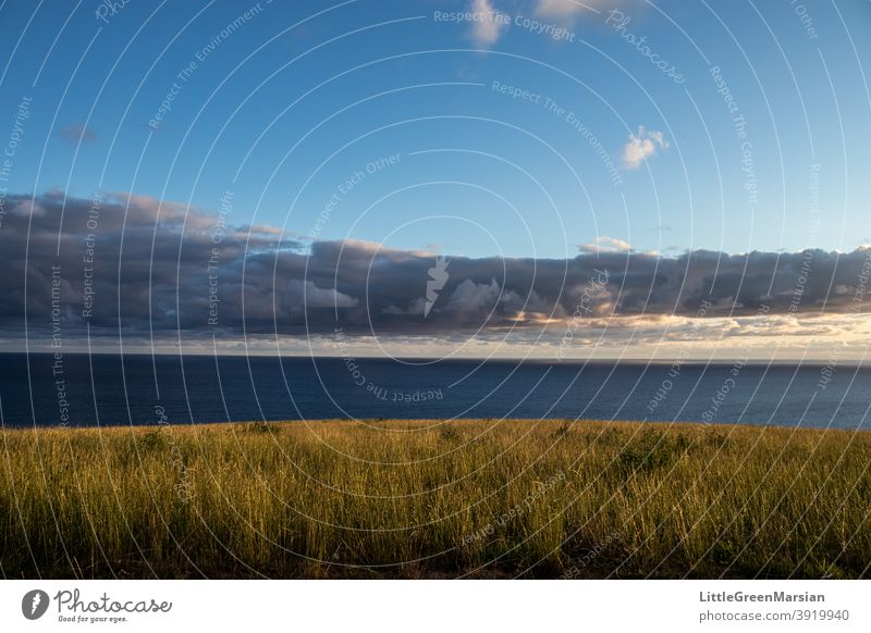 View of the sea in the morning seascape Ocean Clouds Blue sky Sunlight Morning colors Shadow play Light Grass Field Green Water ripples Waves seaside Sky Nature