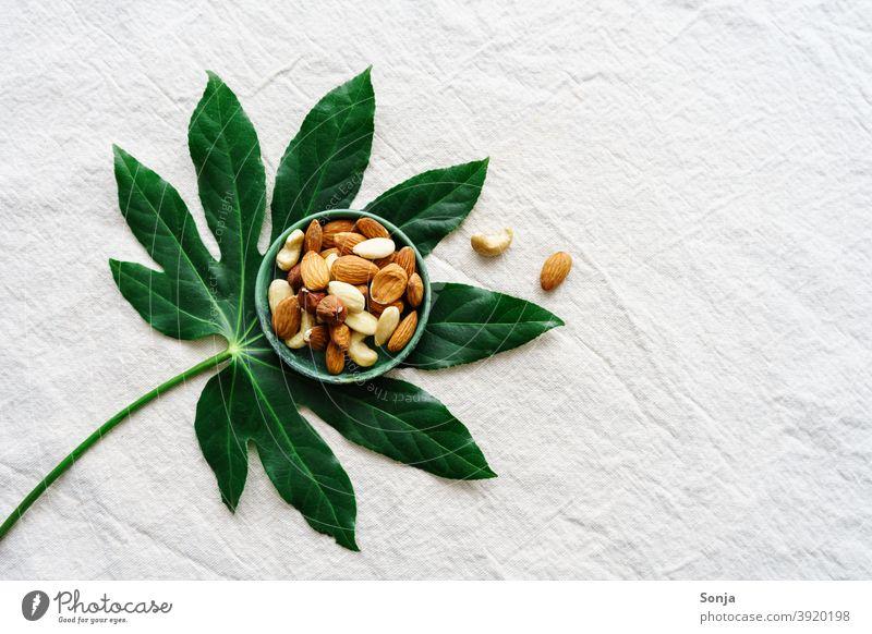 Variation of nuts in a bowl on a green leaf. Linen cloth. variation Leaf Green Beige Protein Diet Vegetarian diet Food photograph Vegan diet Healthy