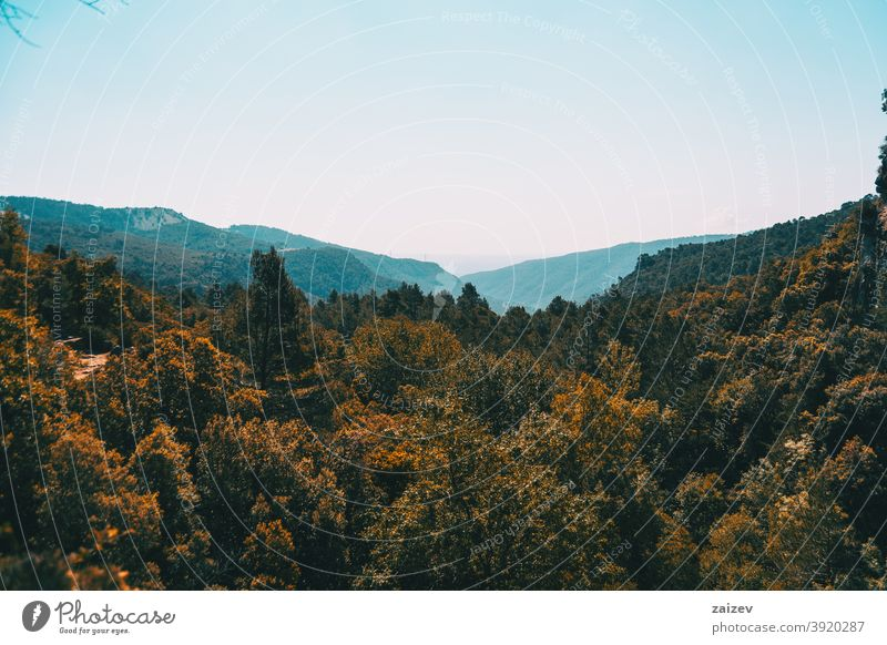 Landscape of the Prades mountains, in Tarragona, Spain. prades catalonia spain without people outdoor medium copy space portrait vertical color top bottom sky