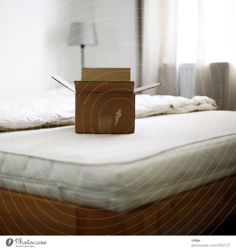 curious Lifestyle Living or residing Moving (to change residence) Arrange Lamp Bed Room Bedroom Drape Deserted Packaging Package Cardboard Cardboard box