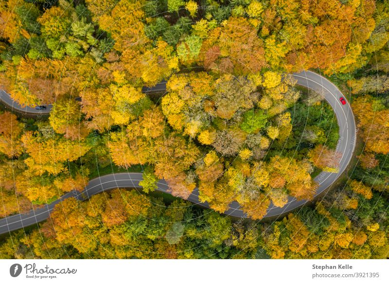 Fantastic autumn - colorful treetops with a significant red car driving through a double curve of a serpentine street at the fall. impressive on the road aerial
