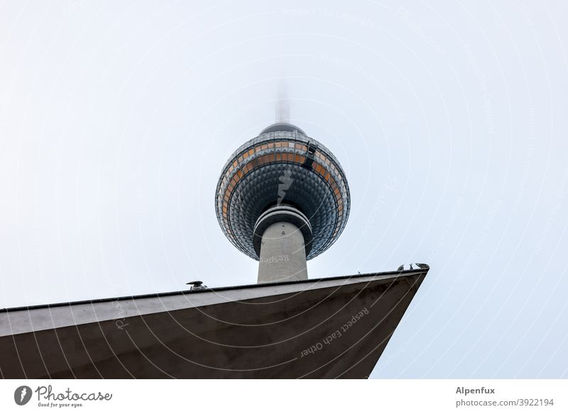 popular corner of Berlin Television tower Berlin TV Tower Architecture Alexanderplatz Downtown Berlin Sky Exterior shot Manmade structures Tourist Attraction