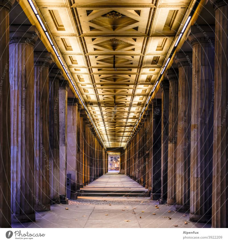 tunnel vision Tunnel vision Central perspective Deserted columns portico Architecture Colour photo Symmetry Tourist Attraction Berlin Manmade structures