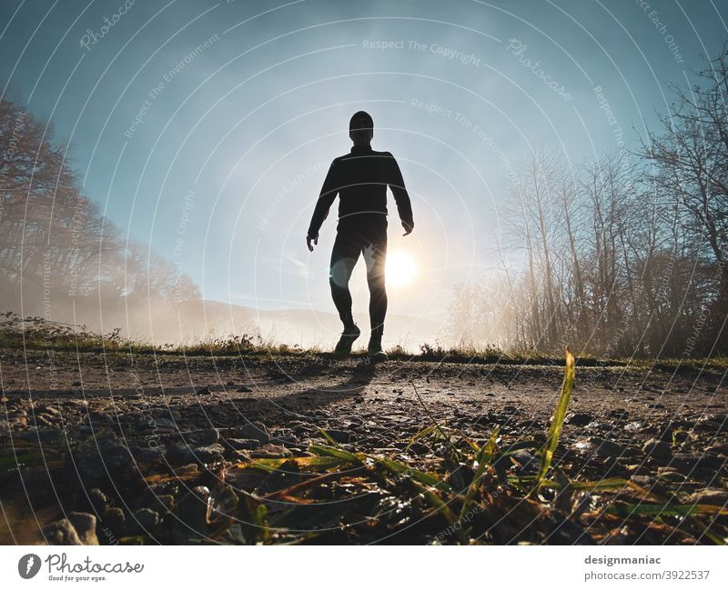 X-Files: The Jogger in the Mist Part 3. The Encounter. Silhouette Fog Above the clouds Clouds Amazing Mystic File x trees Lanes & trails Grass Cold cold season