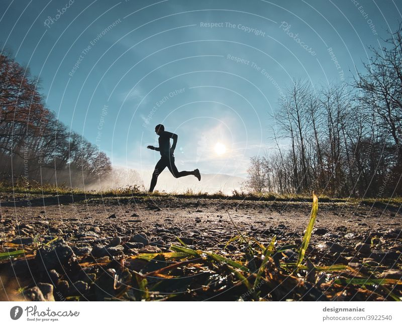 X-Files: The Jogger in the Mist Part 2. The Escape. Silhouette Fog Above the clouds Clouds Amazing Mystic File x trees Lanes & trails Grass Cold cold season Sky