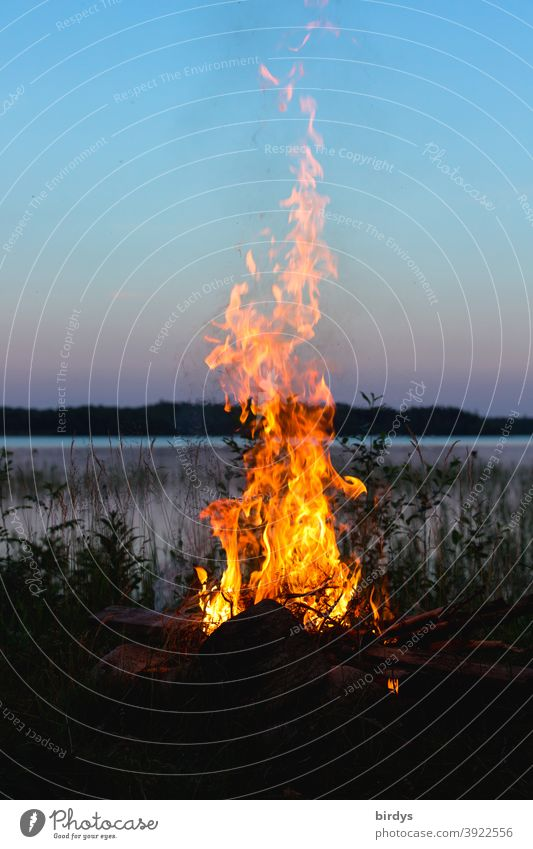 Campfire on the shore of a lake at dusk. outdoor camping Fire campfire Nature Lake Dusk blaze evening sky Flame Fireplace Warmth Burn Lakeside Wilderness