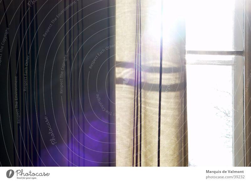 Sun Window Moody Rope Living or residing Drape Window transom and mullion