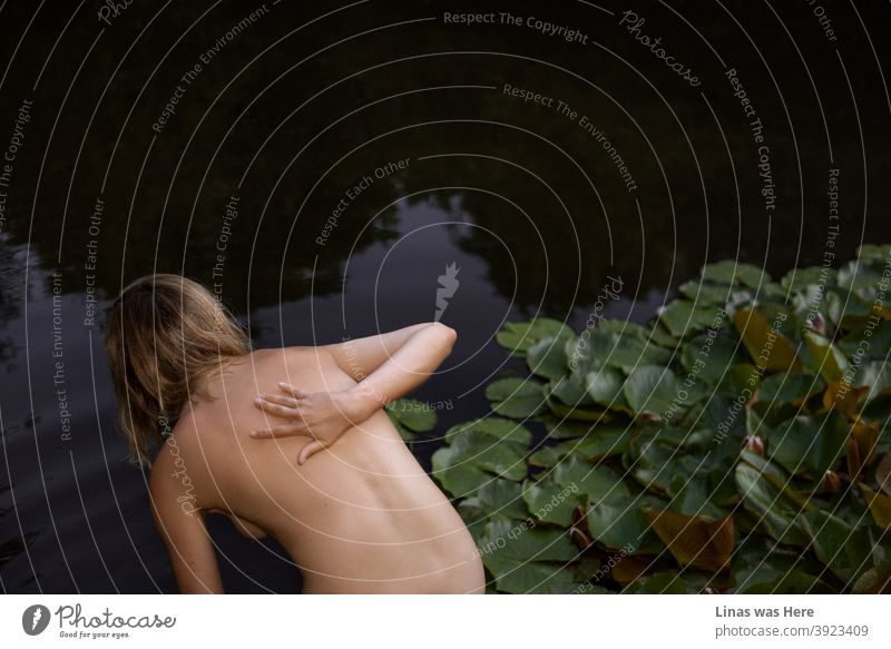 This is a picture of a young and naked girl swimming in dark waters. Pond with water lilies and a nude woman in the image. This sensual picture was made on a perfect summer evening with a perfect model.