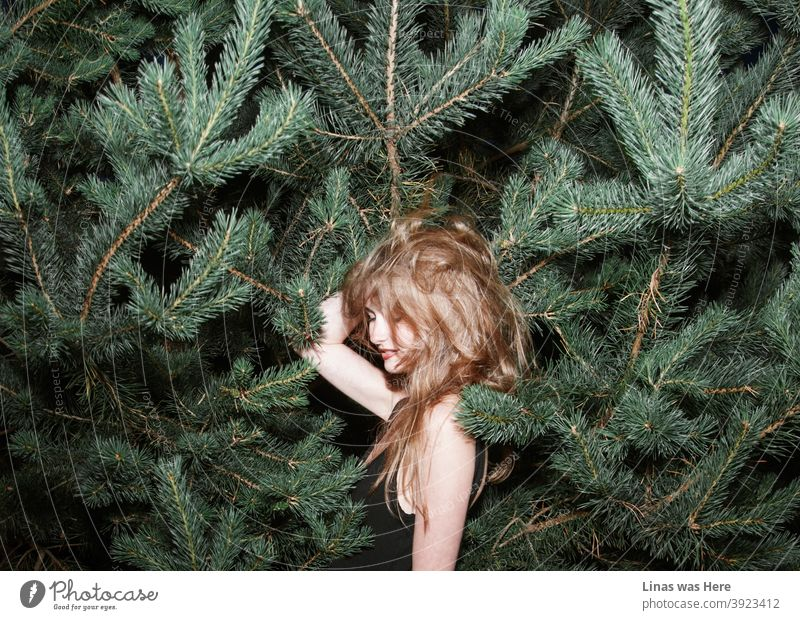 This girl doesn't bother if the spikes of pine are all around. She is having fun no matter what, even if it's a bad hair day. brunette girl happy smile bushes