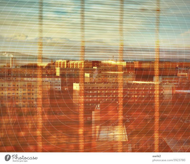 Through the slats bamboo roller blind Venetian blinds Roller blind Vista Window pane Glass detail Vantage point Detail Thin Transparent Living or residing