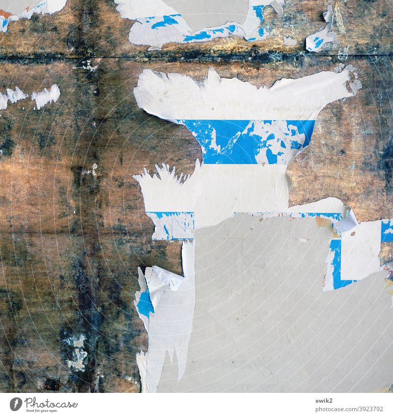 annals remnants Paper Poster Advertising Billboard Old Wall (building) Structures and shapes Pattern Transience Multicoloured Decline Remainder Detail Abstract
