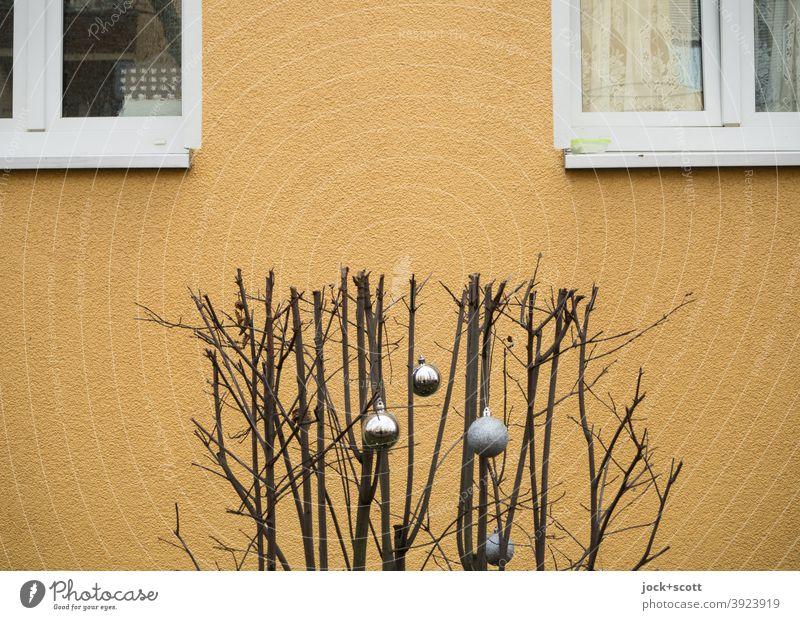unnatural winter cut with decorative Christmas balls Bleak Plant Winter Rendered facade Beige Window pre-Christmas period Decoration Christmas & Advent