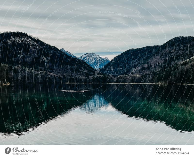 Alpsee in winter mountain lake Winter Snowcapped peak Mountain Forest Lake clear water Turquoise reflection cloudy Nature Landscape Water Exterior shot Deserted