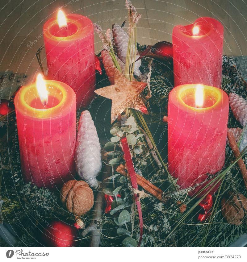 4 kerzen brennen Advent Kerzen rot Licht Weihnachten Hoffnung Adventskranz