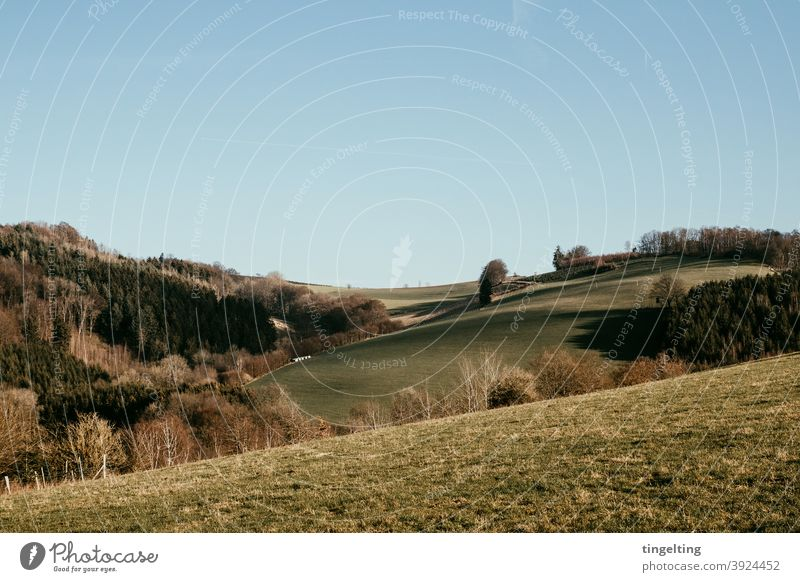 Landscape Sauerland Hiking Camping Discover Adventure Movement Nature trees Tree Meadow mountains Hill Curved flexed Green sky without clouds Weather naturally