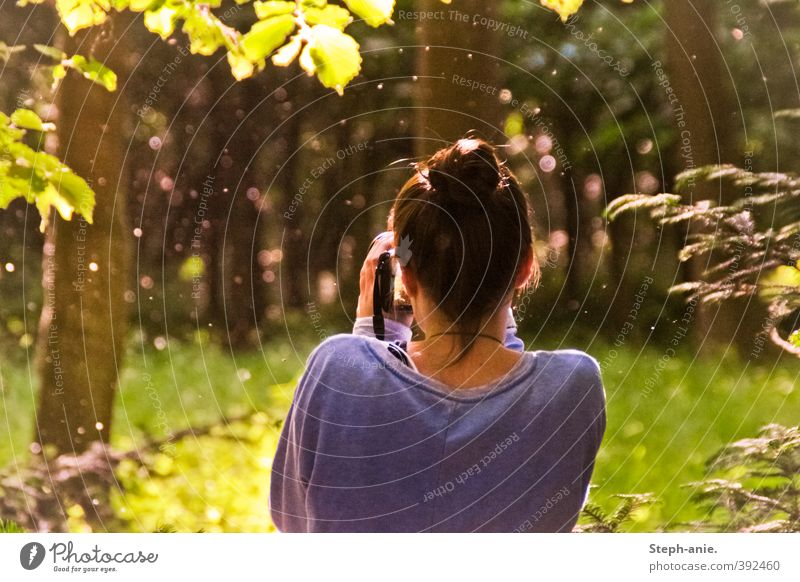 Human being Nature Youth (Young adults) Green Beautiful Summer Tree Calm Young woman Forest Life Feminine Exceptional Dream Back Free