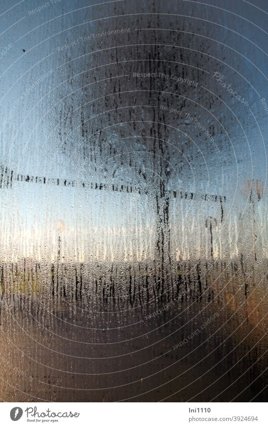 Condensation on glass pane in the background of the outdoor terrace a tree is visible Pane Outdoor terrace Sunlight Blue sky solar irradiation Warmth