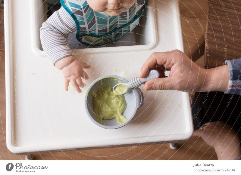 6 month old baby sitting in high chair with bowl of pureed avocado; father's hand holding loaded spoon infant child 6 months old homemade weaning