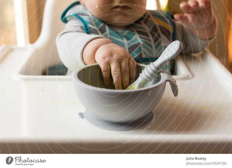 6 month old baby in high chair reaching for a bowl of baby food and spoon infant child 6 months old avocado puree homemade weaning baby led weaning first food