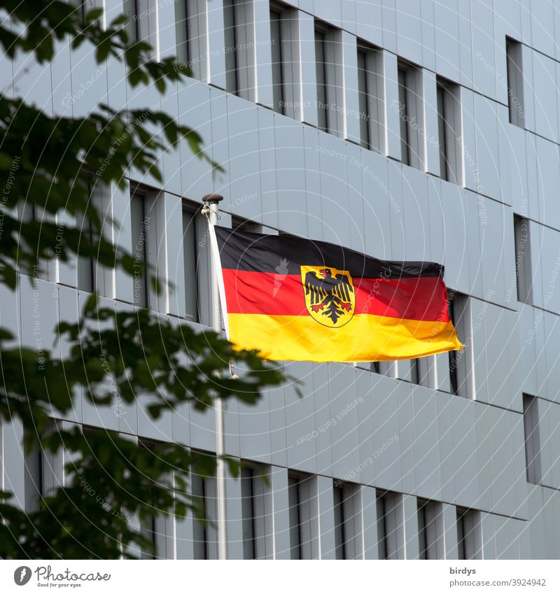 German flag with federal eagle in front of a state building waving in the wind Germany brd Federal eagle Flag Wind Patriotism Ensign Politics and state