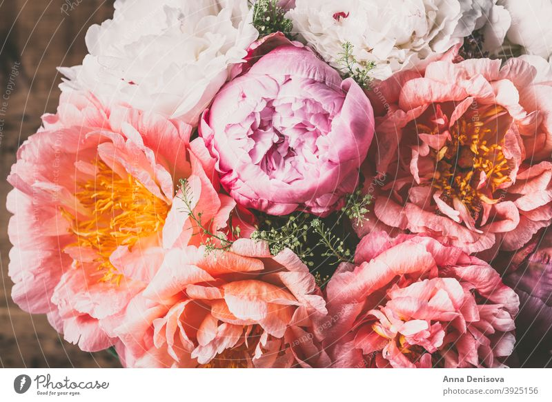 Amazing Fresh bunch of pink peonies peony coral flower cerise bouquet pastel floral petals wallpaper card postcard spring love summer holidays romantic garden