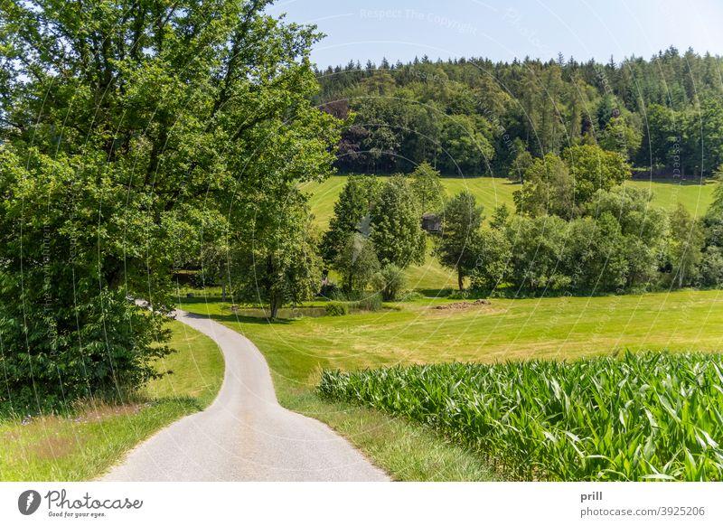 Bavarian Forest scenery bayerischer wald bayern idyllisch natur wiese weide sommer friedlich gras baum landschaft erholung umweltschutz deutschland niederbayern