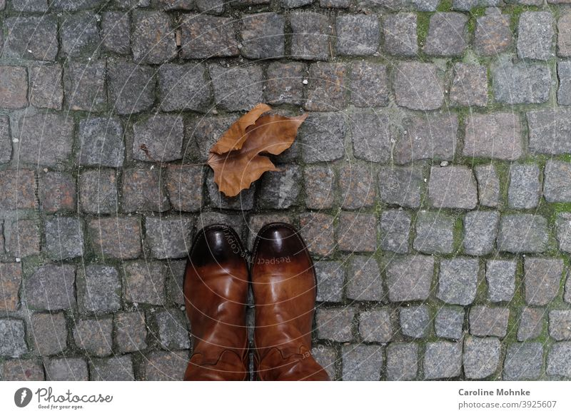 Woman stands in brown boots on cobblestones in front of a stunted leaf in winter Leaf Winter Cobblestones Boots Brown Colour photo Exterior shot Day Deserted