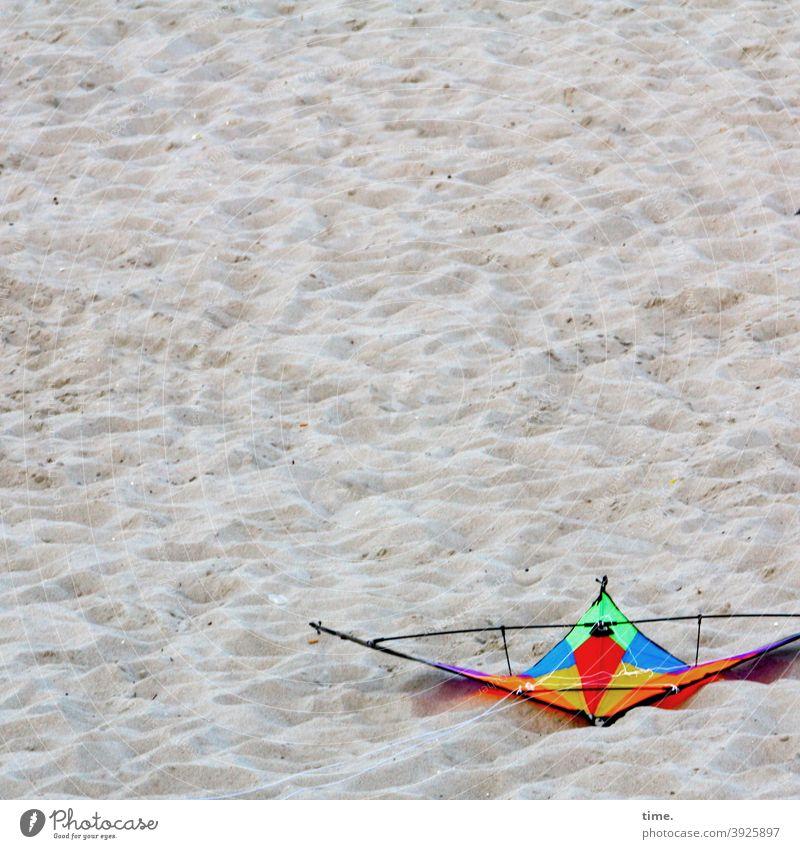colourful beach bird kites Kite Beach Lie Crash Emergency landing Sand variegated Toys toy kite dragon sport vacation holidays free time