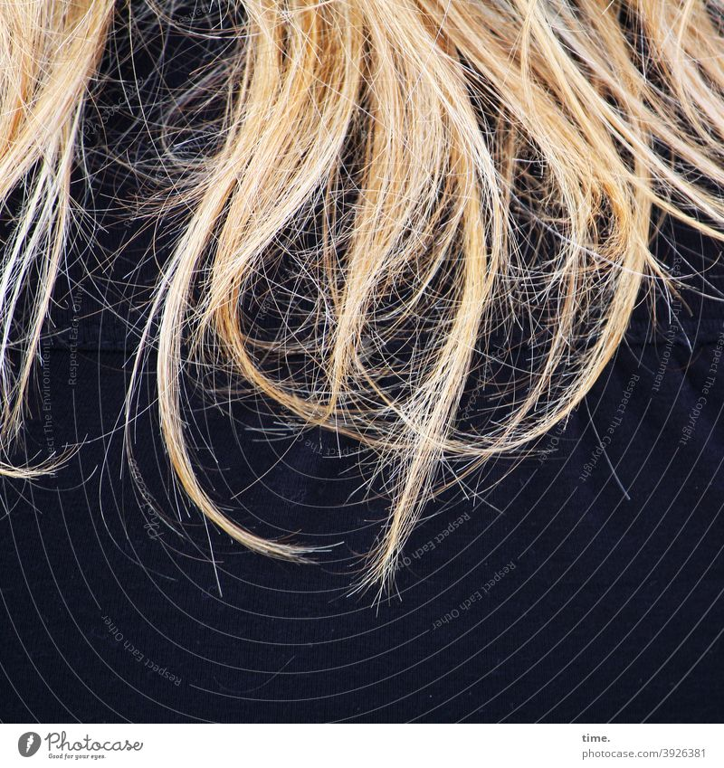 Temptation (early stage) hair hairstyle Blonde Wild wisps Long-haired Coat Jacket Rear view feminine Shoulder Yellow dark blue texture Cold chill Muddled
