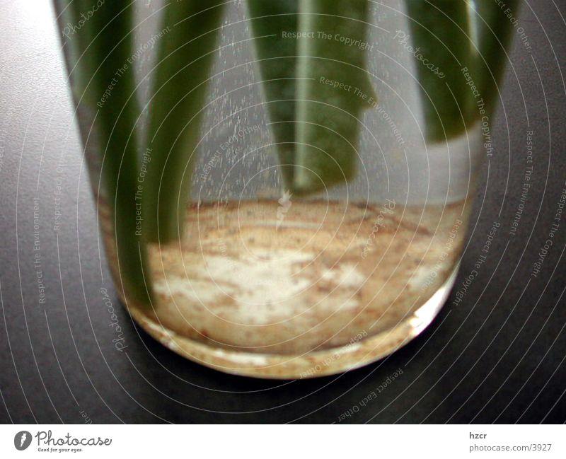 Things Vase
