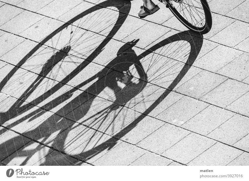 Tricycle and a foot Bicycle Feet pavement Light Shadow Black & white photo Exterior shot Street Day Transport Road traffic Contrast