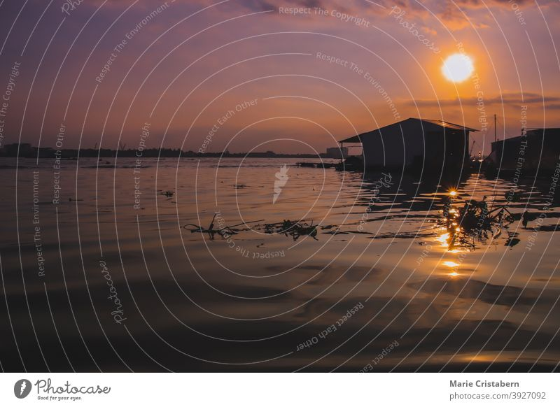 Cinematic scenery of the sunset over the Mekong Delta in Vietnam, showing the daily life and culture tranquility cinematic mood outdoors design asset no people