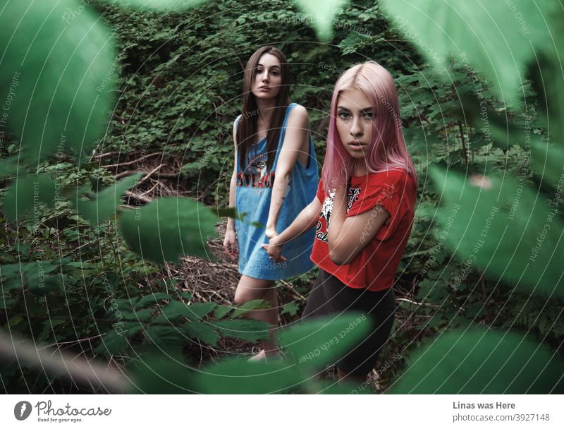 These woods are roamed with wild and gorgeous girls. Dark or pink hair, these girls don't care. Teenage spirit and wilderness are in their blood. wild girls