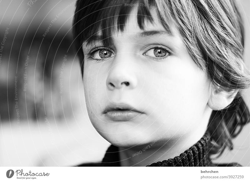 . Interior shot Brash Cool Cool (slang) Family Light Day Face Infancy Boy (child) Child Close-up Contrast portrait Sunlight Son Family & Relations