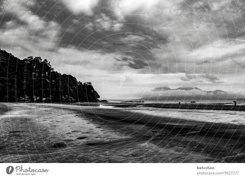 Heaven and earth dramatic sky Dramatic art Contrast Light Day Sand Runlet Come Watercraft Sarawak Exterior shot Beach Ocean Bako National Park Malaya
