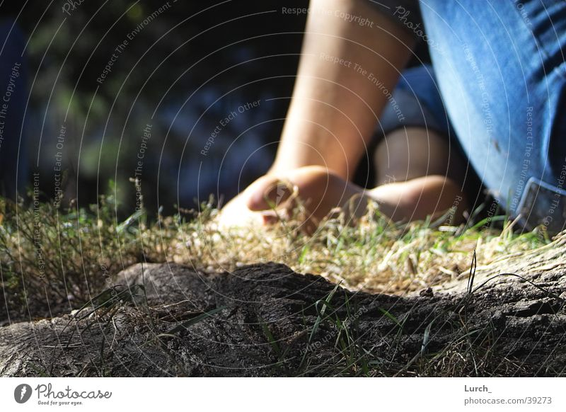 toe pain Toes Calm Meadow Depth of field Summer Root Sit Feet Barefoot