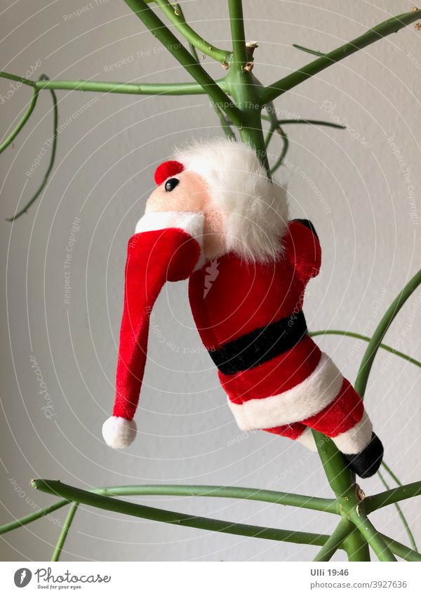Santa on his way to retirement . . . . . . Santa Claus Christmas party climbing scaffold Christmas tree queer Downward To hibernate red/white funny plant