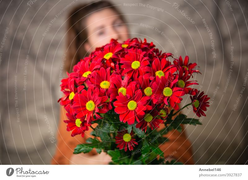 Gifts, celebration and tenderness concept. Surprised cute young female holding a bouquet of red flowers, daisies for Valentines Day or Birthday, romantic background