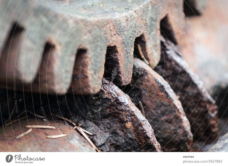 Old Rusty Gear Grips Grooves Gearwheel Industry Serrated Structures and shapes Technology Metal Patina corroded Wheel Gear unit Mechanism Mechanics Connection