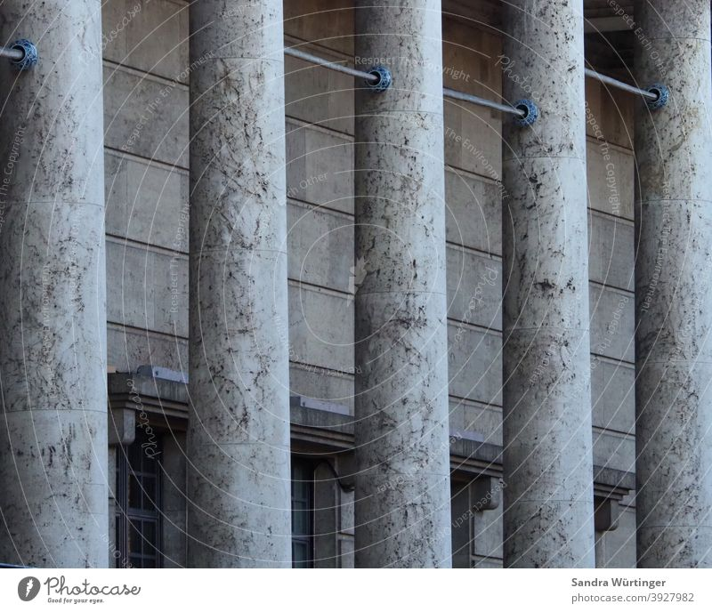 Grey Columns, House of Art columns Gray Winter Building Detail Architecture Deserted Exterior shot Manmade structures Colour photo Facade Wall (building)